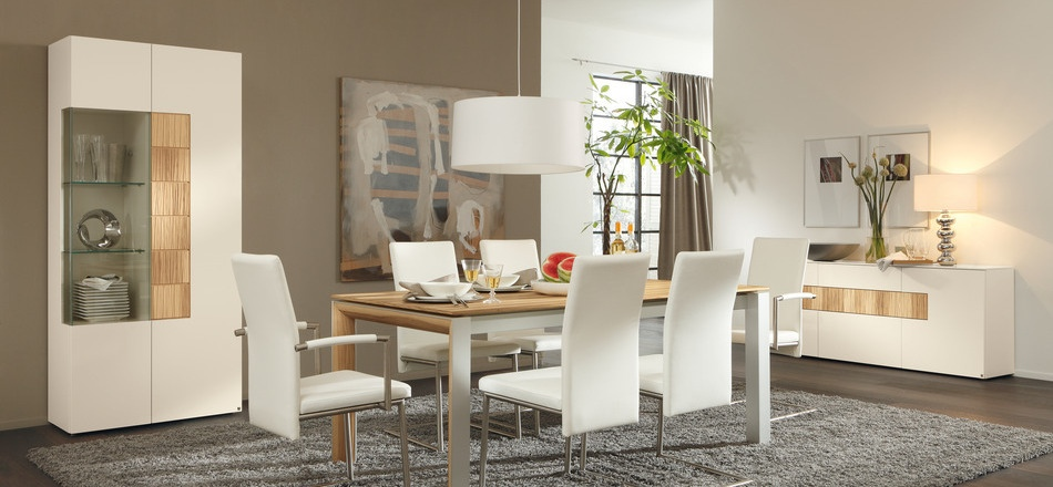 catchy-contemporary-dining-room
