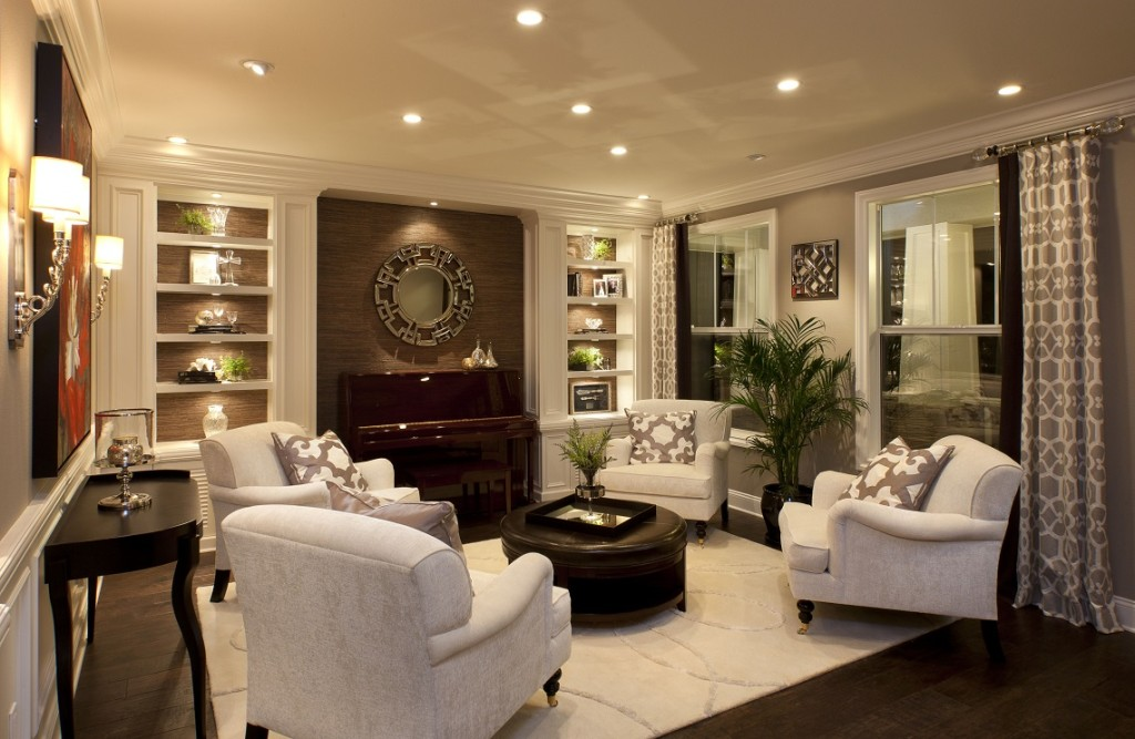 stylish-transitional-home-living-room-robeson-design-_