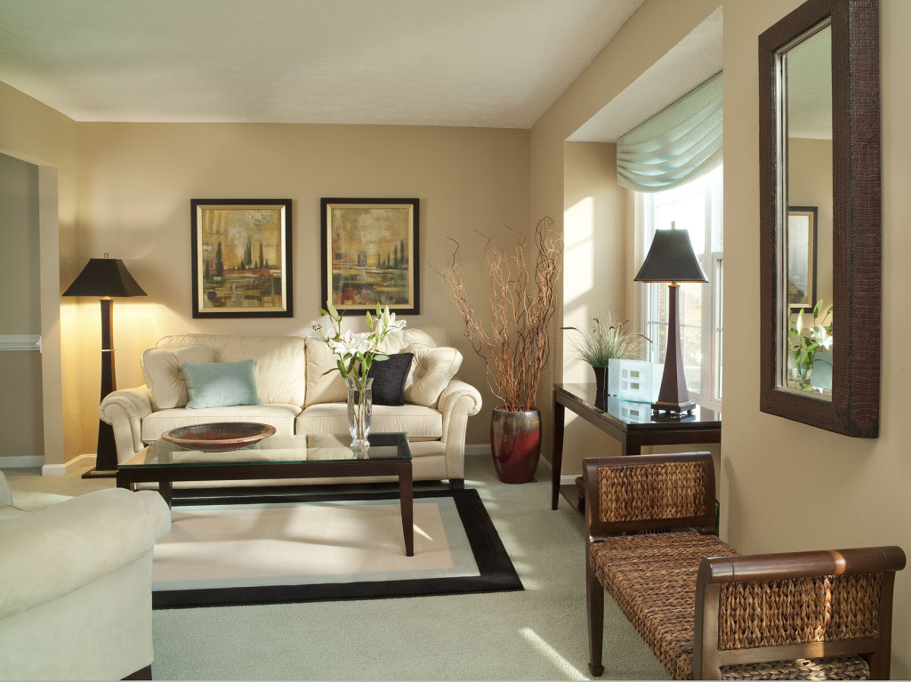 transitional-living-room-designs-