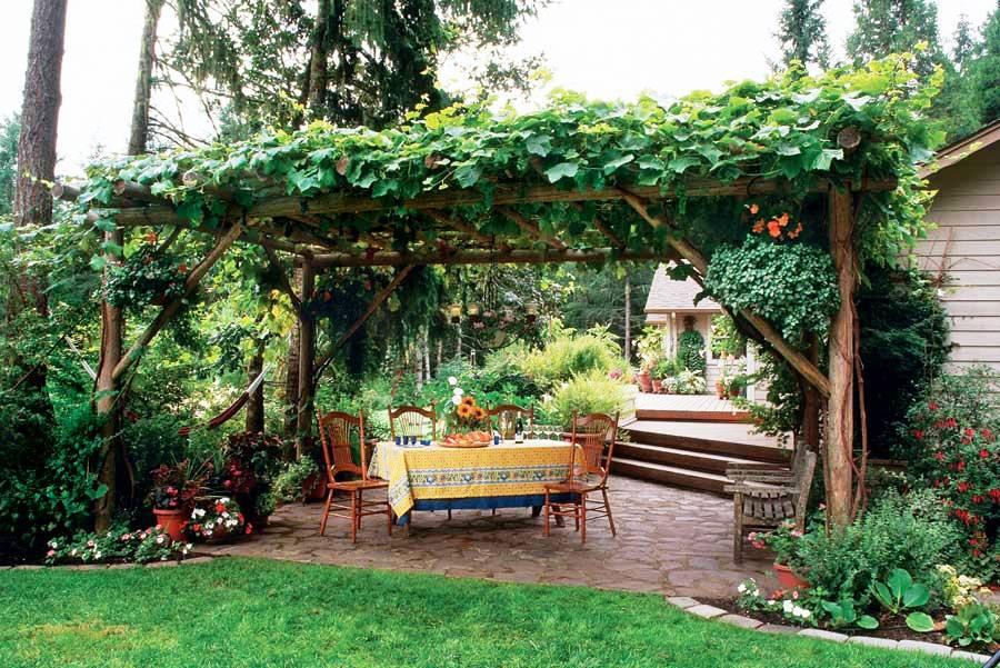 grape arbor ideas decor patio