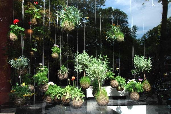 modern-hanging-garden