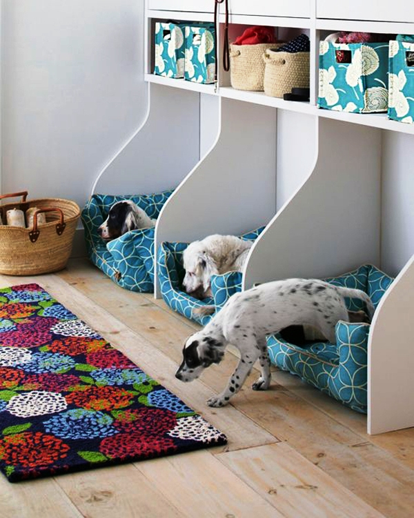 three-dog-beds-design-ideas