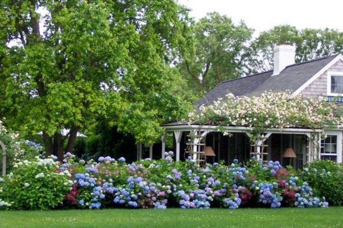 wonderful-landscaping-with-hydrangeas-with-home-landscaping-with-hydrangeas-for-wonderful-exterior