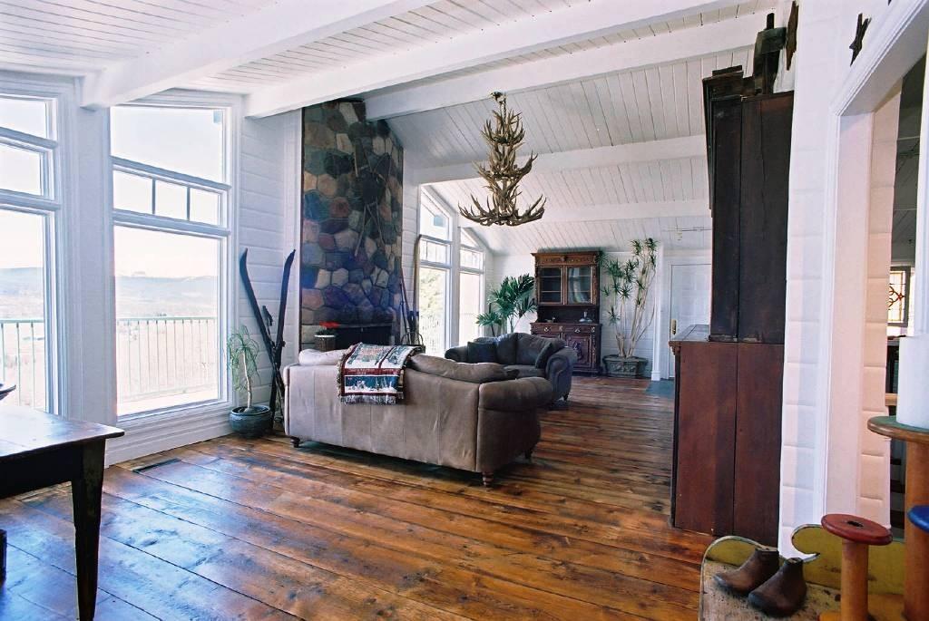 antique-floor-and-antler-chandelier-plus-house-plants-