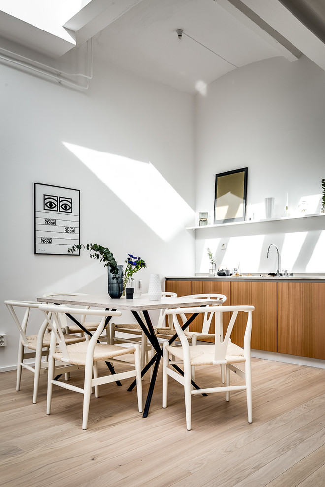 Scandinavian Eat-In Kitchen