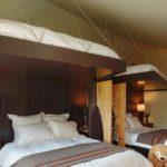 25 Unique Bunk Beds Design Ideas