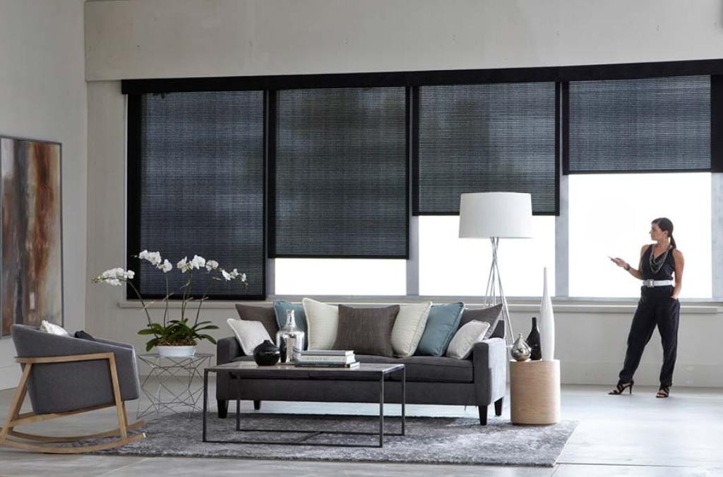 blinds automated or manual