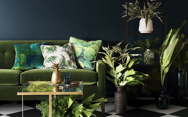 Bring Nature to Your Home
