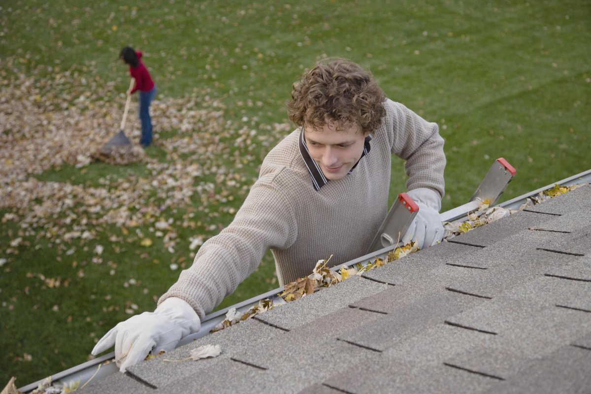 Cleaning Roof Gutters and Downspouts