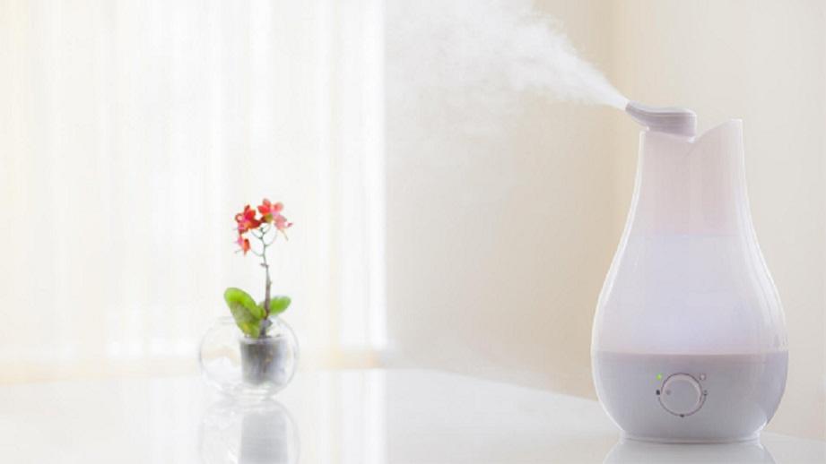 Warm Mist vs. Cool Mist Humidifier