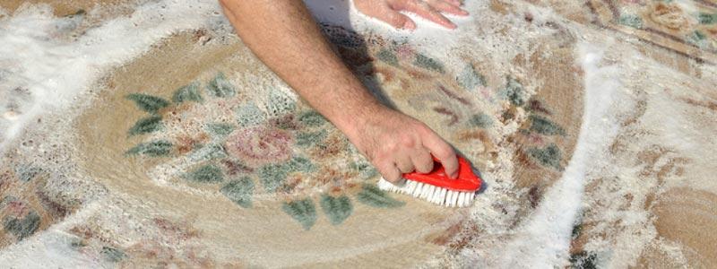 DIY Rug Cleaning