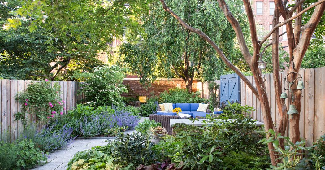 Build a Backyard Garden