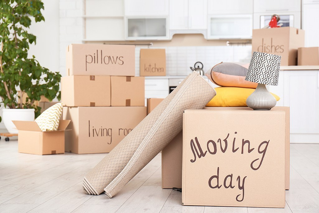 Make a Moving Day Box