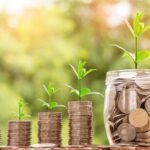 Making The Right Investments With The Assets You Have