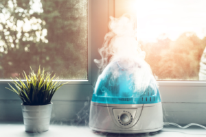 Warm vs. Cool Mist Humidifier: Which is Best for Your Bedroom?