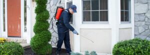5 Important Do's And Don'ts Of Winter Pest Control